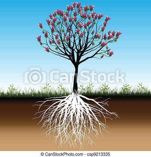 Árbol de flores - csp9213335