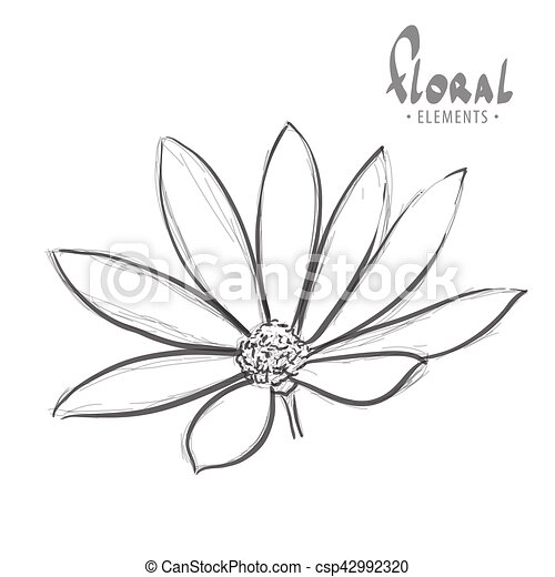 Flor en un fondo blanco - csp42992320