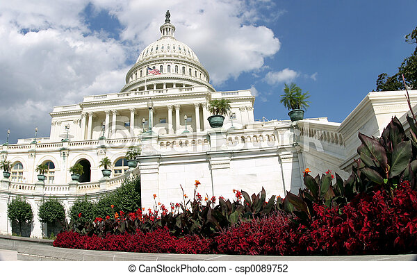 Capitol en flor - csp0089752