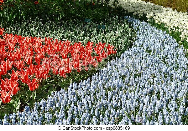 flor de primavera, cama - csp6835169