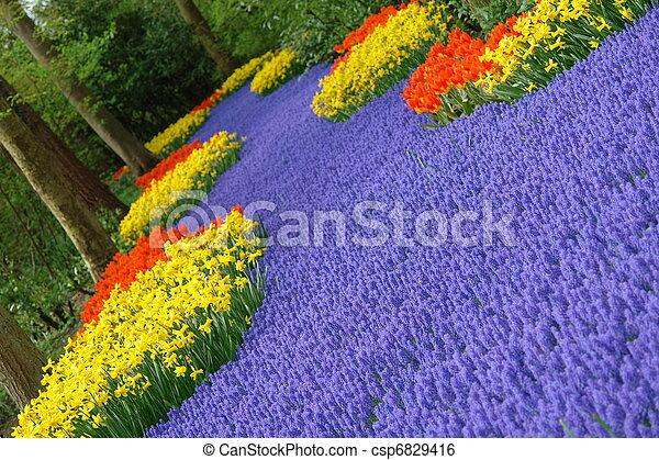 flor de primavera, cama - csp6829416