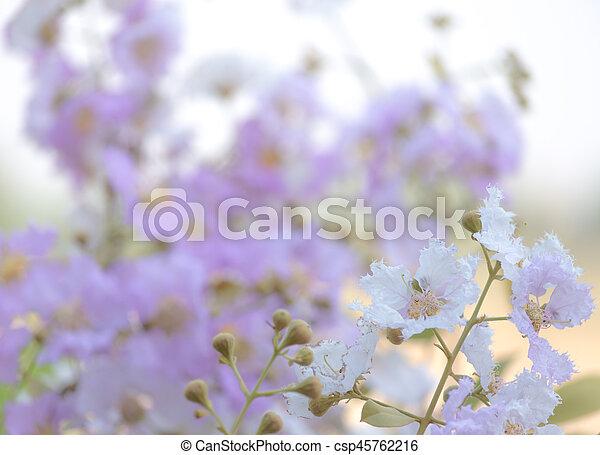 Flor de flor. - csp45762216
