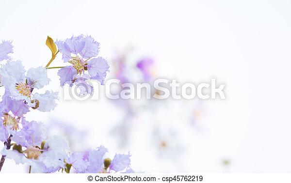 Flor de flor. - csp45762219