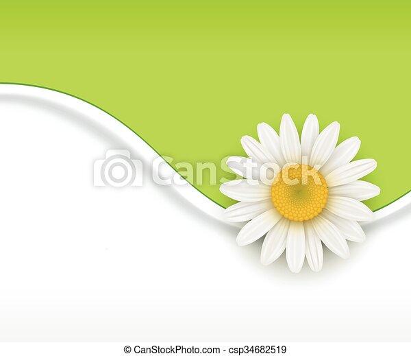 Trasfondo de flores verdes - csp34682519