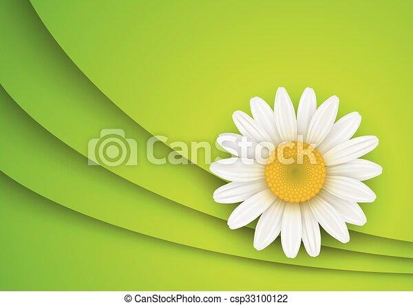 Trasfondo de flores verdes - csp33100122