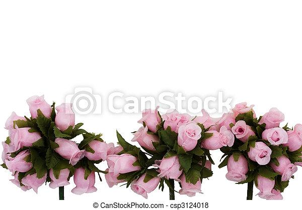 flor, frontera - csp3124018