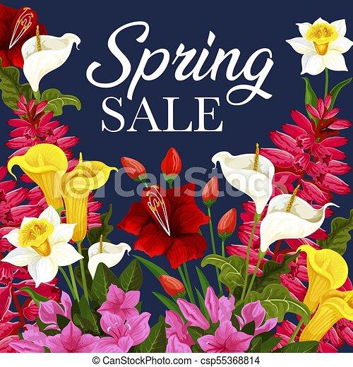 Flor, oferta, primavera, marco, venta, descuento, tarjeta. Ramo ...