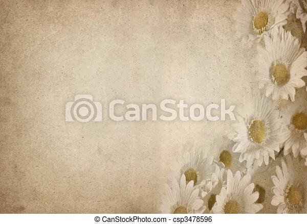 flor, pergaminho - csp3478596
