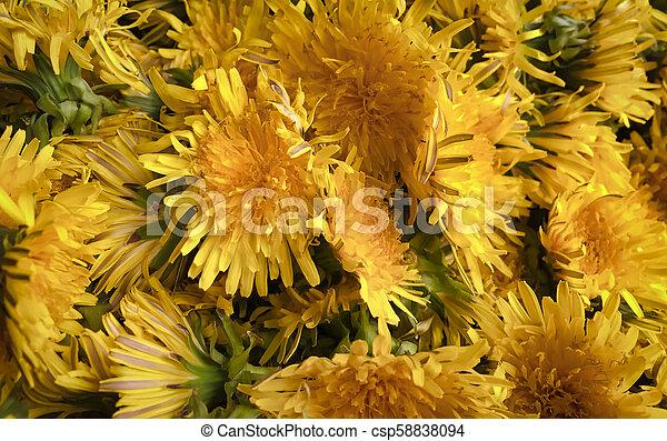 El primer plano de una flor - csp58838094