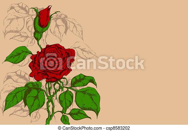 flor, retro - csp8583202