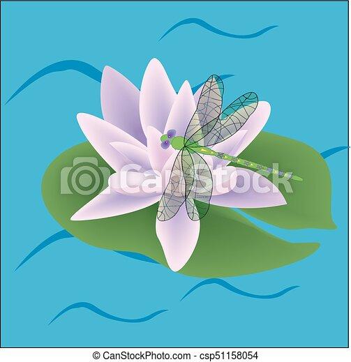 Flor Rosa Color Hojas Loto Vector Dibujo