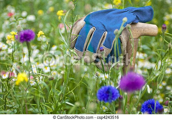 Flor silvestre - csp4243516