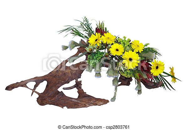 Floral Arrangement on Driftwood - csp2803761