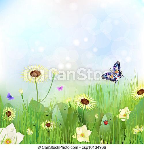 Floral background - csp10134966
