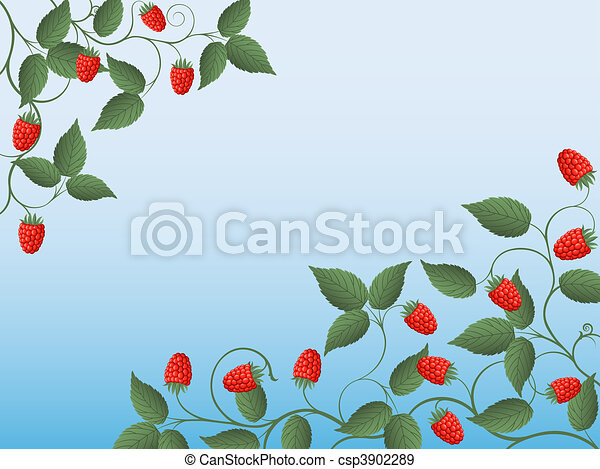 Floral background with a raspberry - csp3902289