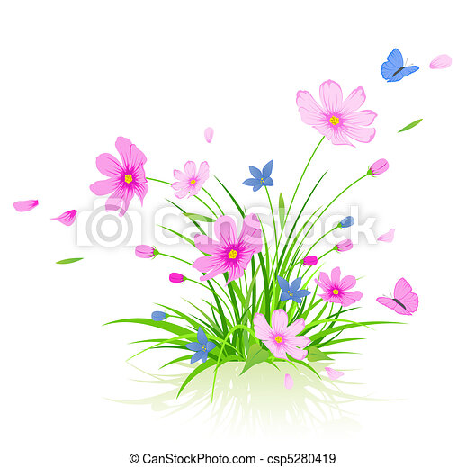 floral background with cosmos flowers - csp5280419