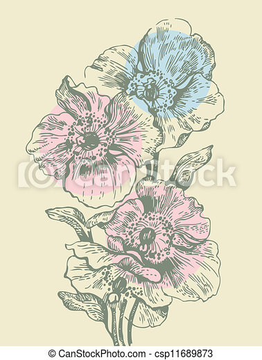 Floral background with poppies - csp11689873