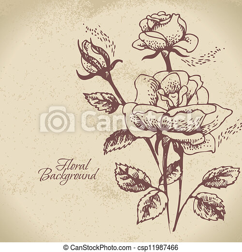 Floral background with roses - csp11987466