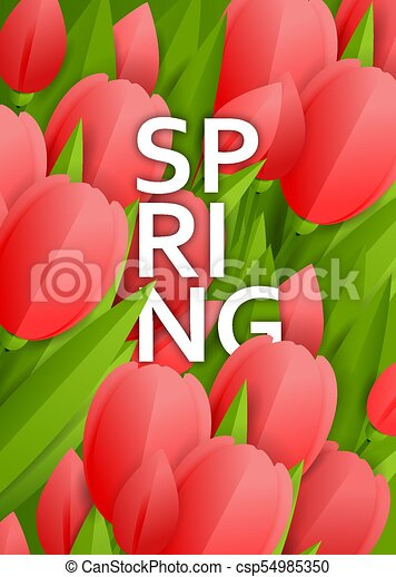 Floral background with tulips - csp54985350
