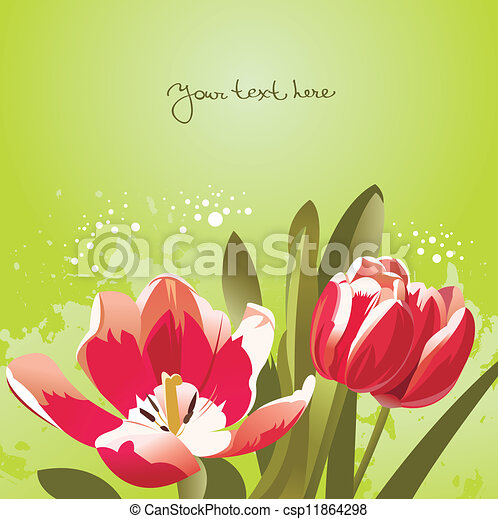 Floral background with tulips - csp11864298