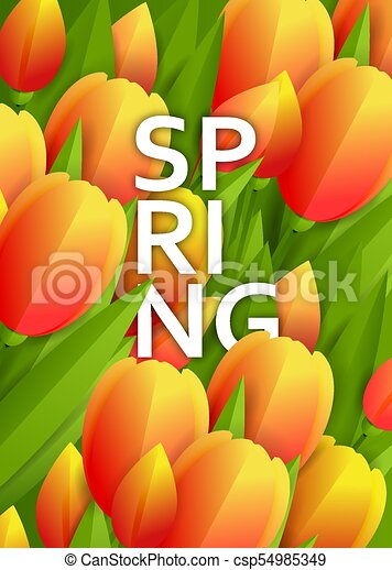 Floral background with tulips - csp54985349