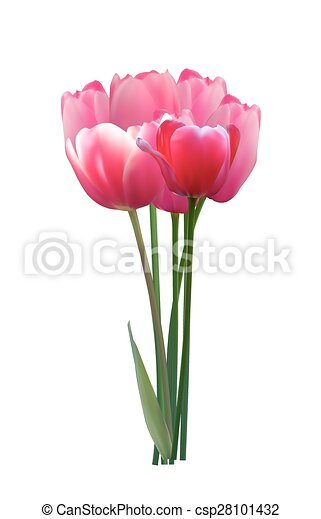 Floral background with Tulips Vector Illustration - csp28101432