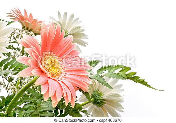 floral, composition - csp1468670