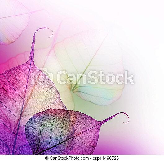 Floral Design. Leaves  - csp11496725
