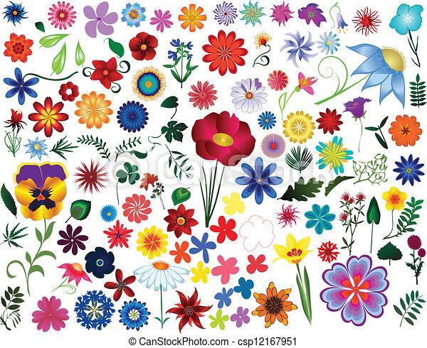 floral elemente, design - csp12167951