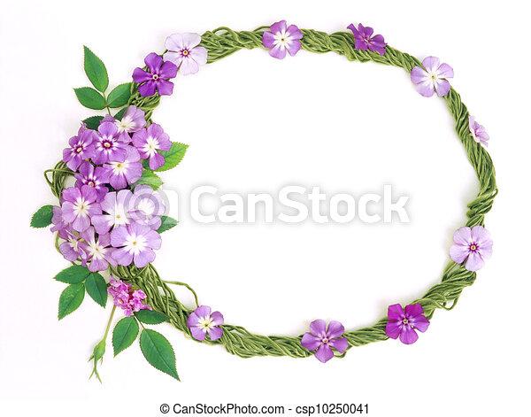 floral frame - csp10250041