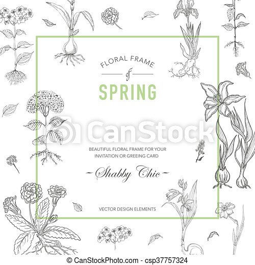 Floral Frame Invitation Card Wedding Card Baby Shower Vector