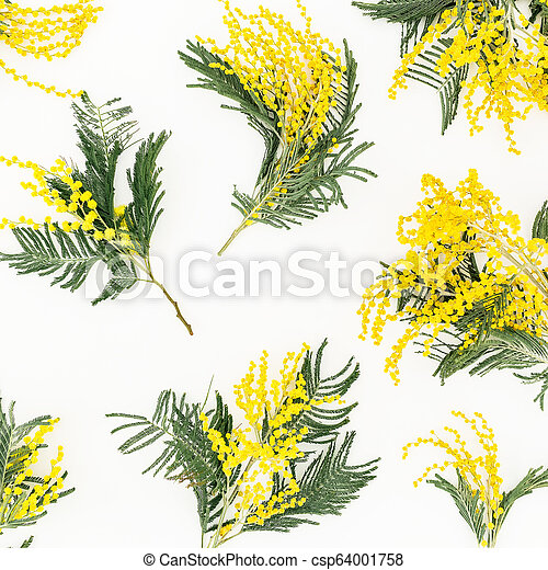 Floral Frame Of Yellow Flower Branches On White Background Flowers