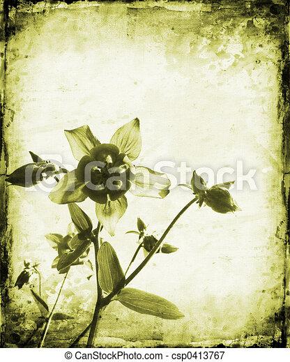 Floral grunge - csp0413767