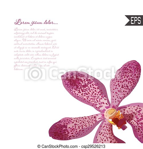 Floral invitation card with beautiful spring tropical flower floral invitation card with beautiful spring tropical flower and banner style perfect for wedding vector stopboris Image collections