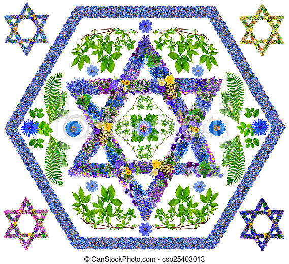 Floral Isolated David Star The Symbol Sign Of Israel And Judaism