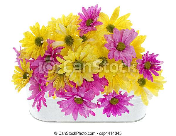 Floral Margaritas Arreglo
