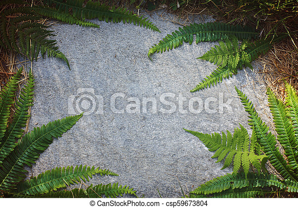 floral ornament of fern leaves on a flat stone - csp59673804