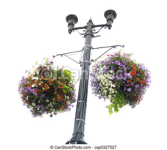 floral, planteur - csp0327527