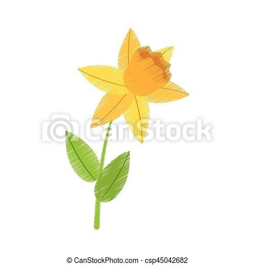 Floral printemps jonquille dessin fleur 10 fleur - Dessin jonquille fleur ...