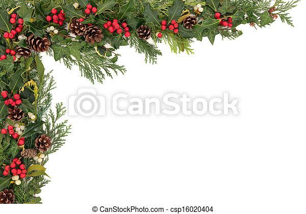 floral rand, kerstmis - csp16020404