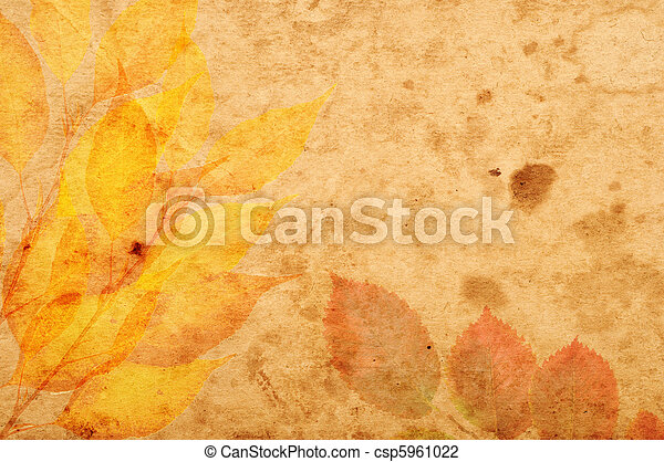 floral style textures and backgrounds frame - csp5961022