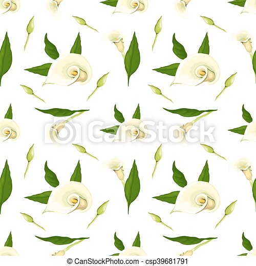 Floral vector pattern with callas. - csp39681791