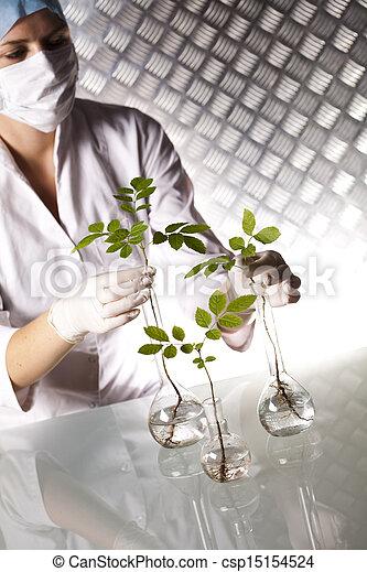 flore, expérimenter - csp15154524