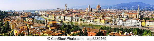 Florence aerial - csp5239469