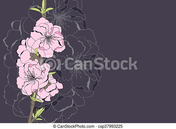 flores, árvore, maçã - csp37993225