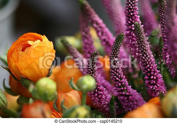 Flores - csp0145210