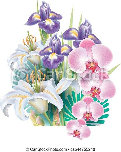 Flores Arranjo Flores Tropicais Vetorial Arranjo