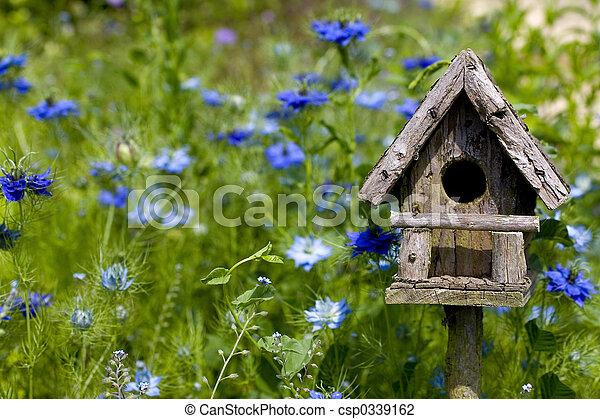 Pájaro y flores - csp0339162