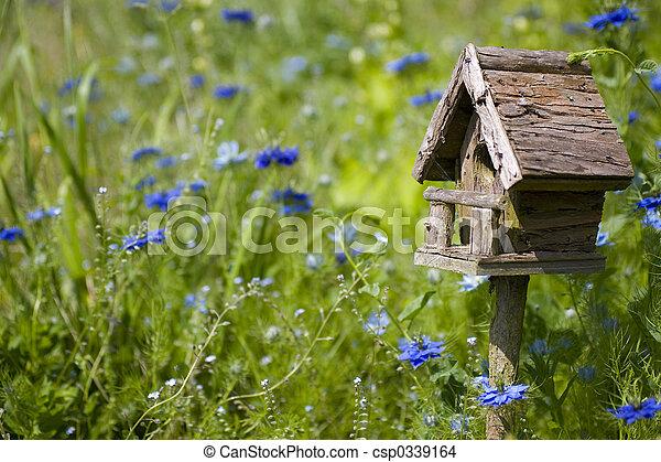 Pájaro y flores - csp0339164