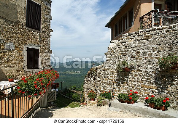 Flores de geranio y vistas del valle con vista a las aves, Croacia - csp11726156